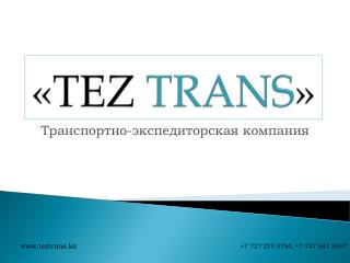 « TEZ  TRANS »