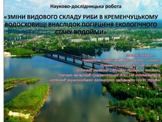 Автор  роботи  : Нагурнова  Анна Сергіївна у чениця  9-Бкласу  Кременчуцької ЗОШ   I-III  ст. №31