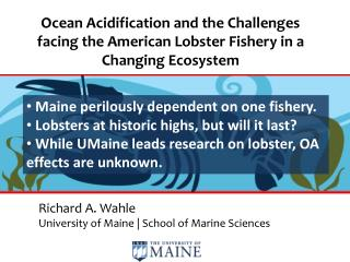 Richard A.  Wahle University of Maine | School of Marine Sciences