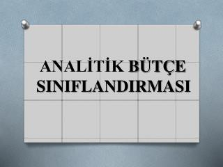 ANALİTİK  BÜTÇE    SINIFLANDIRMASI