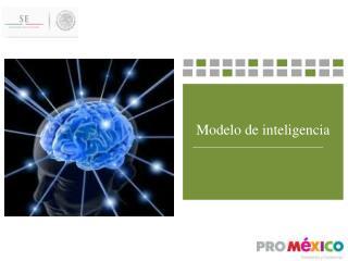Modelo de inteligencia    ______________________________