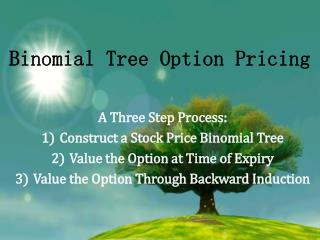 Binomial Tree Option Pricing