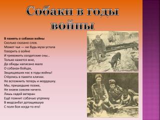 Собаки в годы войны
