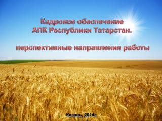 Кадровое обеспечение  АПК Республики Татарстан .  перспективные направления работы