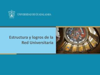 Estructura y logros de la Red Universitaria