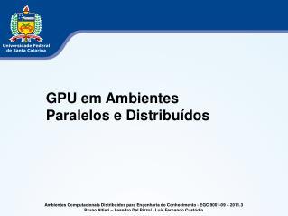 Ambientes Computacionais Distribuídos para Engenharia do Conhecimento  - EGC 9001-09 – 2011.3