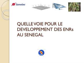 QUELLE VOIE POUR LE DEVELOPPEMENT DES  ENRs  AU SENEGAL