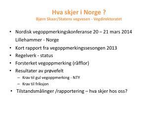 Hva skjer i Norge ?  Bjørn Skaar/Statens vegvesen - Vegdirektoratet