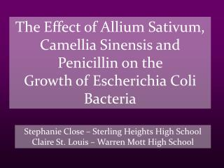 The Effect of Allium Sativum, Camellia Sinensis and Penicillin on the