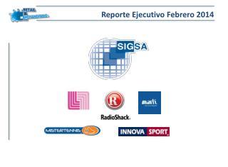 Reporte Ejecutivo Febrero 2014