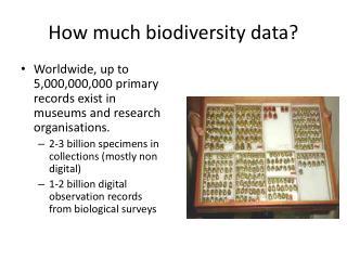 How much biodiversity  data?