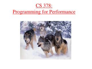 CS 378: Programming for Performance