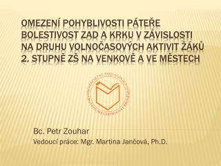 Bc. Petr Zouhar Vedoucí práce: Mgr. Martina  Jančová ,  Ph.D .