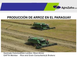 PRODUCCIÓN DE ARROZ EN EL PARAGUAY