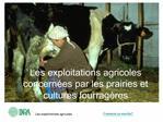 Les exploitations agricoles concern es par les prairies et cultures fourrag res