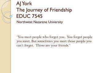 AJ York The Journey of Friendship EDUC 7545