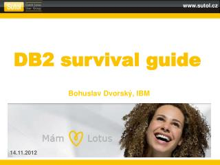 DB2  survival guide