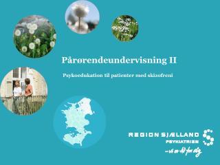 Pårørendeundervisning II  Psykoedukation til patienter med skizofreni