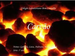 Colegio  Salvatoriano Bom Conselho Carvão