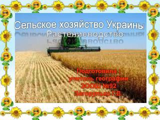 Сельское хозяйство Украины