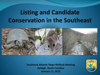 Listing and Candidate Conservation in the Southeast