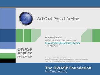 WebGoat Project Review