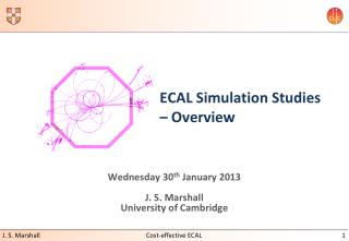 ECAL Simulation Studies – Overview