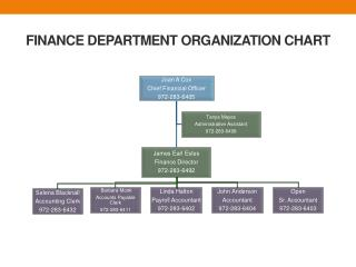 FINANCE DEPARTMENT ORGANIZATION CHART