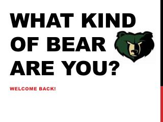 What Kind of Bear Are you?
