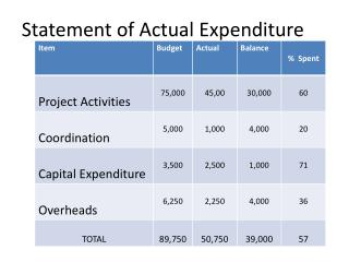 Statement of Actual Expenditure