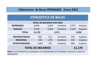 Fideicomiso  de Becas PRONABES   Enero 2013