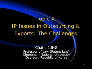 Topic X IP Issues in Outsourcing  Exports: The Challenges