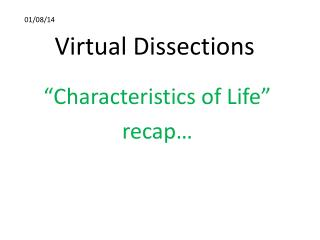 Virtual Dissections