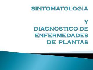 SINTOMATOLOGÍA Y  DIAGNOSTICO DE  ENFERMEDADES     DE  PLANTAS