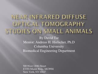 Near-infrared Diffuse Optical Tomography studies on small animals