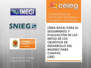 Comité Estatal de Información Estadística y Geográfica de Chiapas
