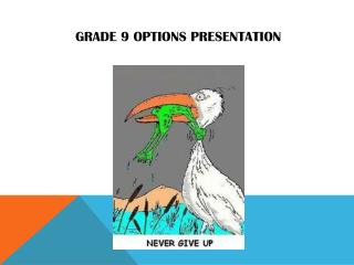 Grade  9  Options  Presentation