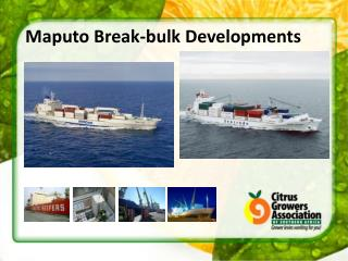 Maputo  Break-bulk Developments