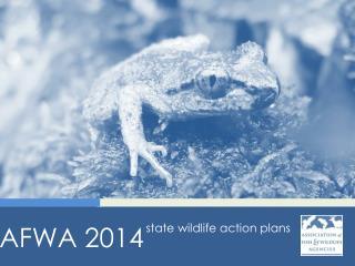 AFWA  2014