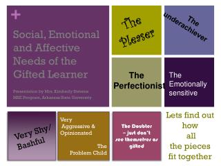 Social, Emotional and Affective Needs of the  Gifted Learner