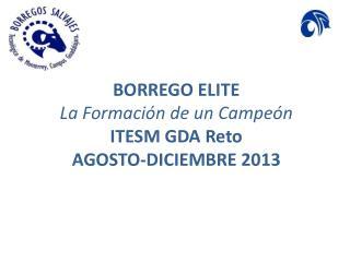 BORREGO ELITE La  Formación  de un  Campeón ITESM GDA  Reto  AGOSTO-DICIEMBRE 2013