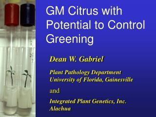Dean W. Gabriel