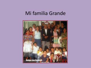 Mi  familia  Grande