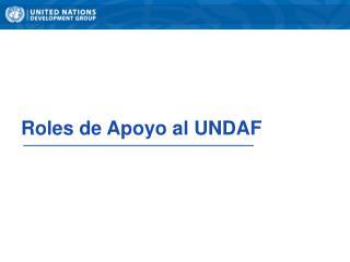 Roles de  Apoyo  al UNDAF