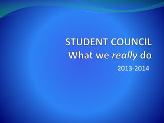 STUDENT COUNCIL What we  really do