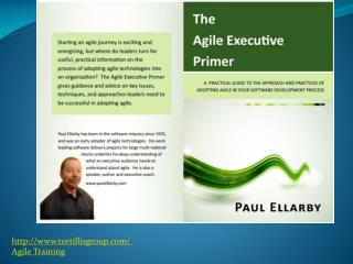The Agile Executive Primer