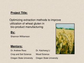 Optimizing extraction methods to improve    utilization of wheat gluten in   bio-product manufacturing