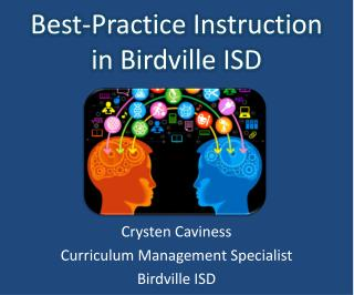 Best-Practice Instruction in Birdville ISD