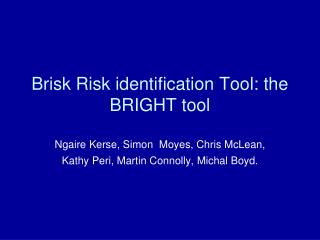 Brisk Risk identification Tool: the BRIGHT tool