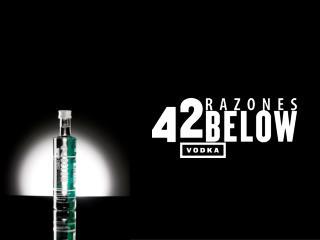 OBJ.COMUNICACIONAL: Que los usuarios compartan sus razones para beber vodka 42 Below.